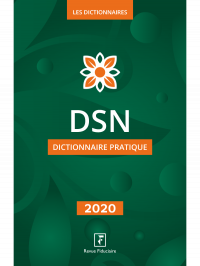 Dictionnaire DSN 2020